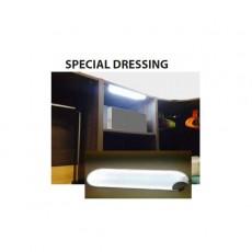 Dalle Spécial Dressing